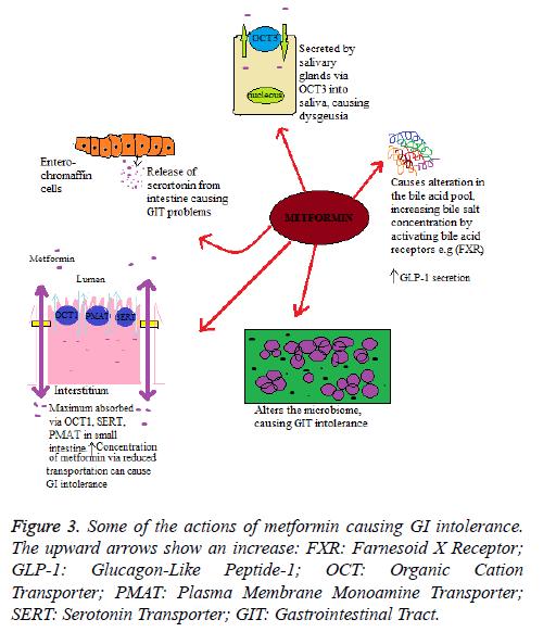 biomedres-metformin-causing