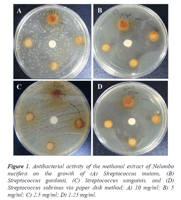 biomedres-methanol-extract
