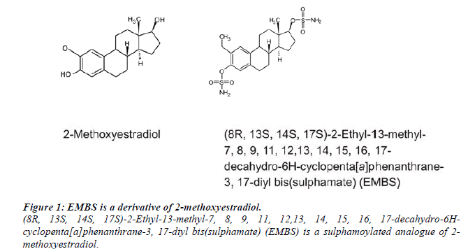 biomedres-methoxyestradiol