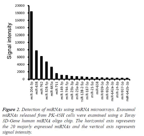 biomedres-miRNA-oligo-chip