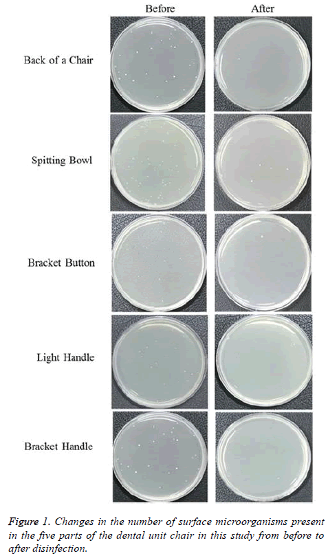 biomedres-microorganisms