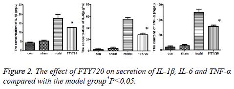 biomedres-model-group