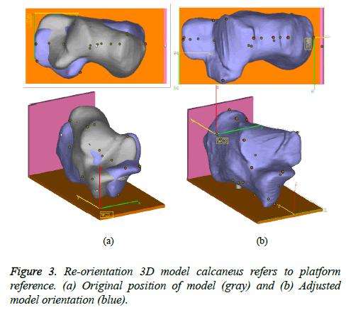 biomedres-model-orientation