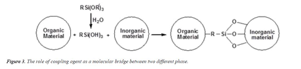 biomedres-molecular-bridge