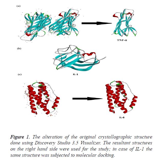 biomedres-molecular-docking