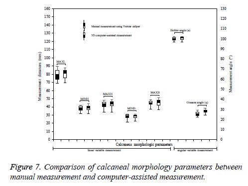 biomedres-morphology-parameters