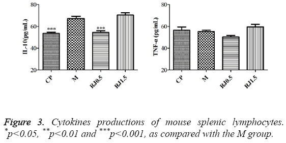 biomedres-mouse-splenic-lymphocytes