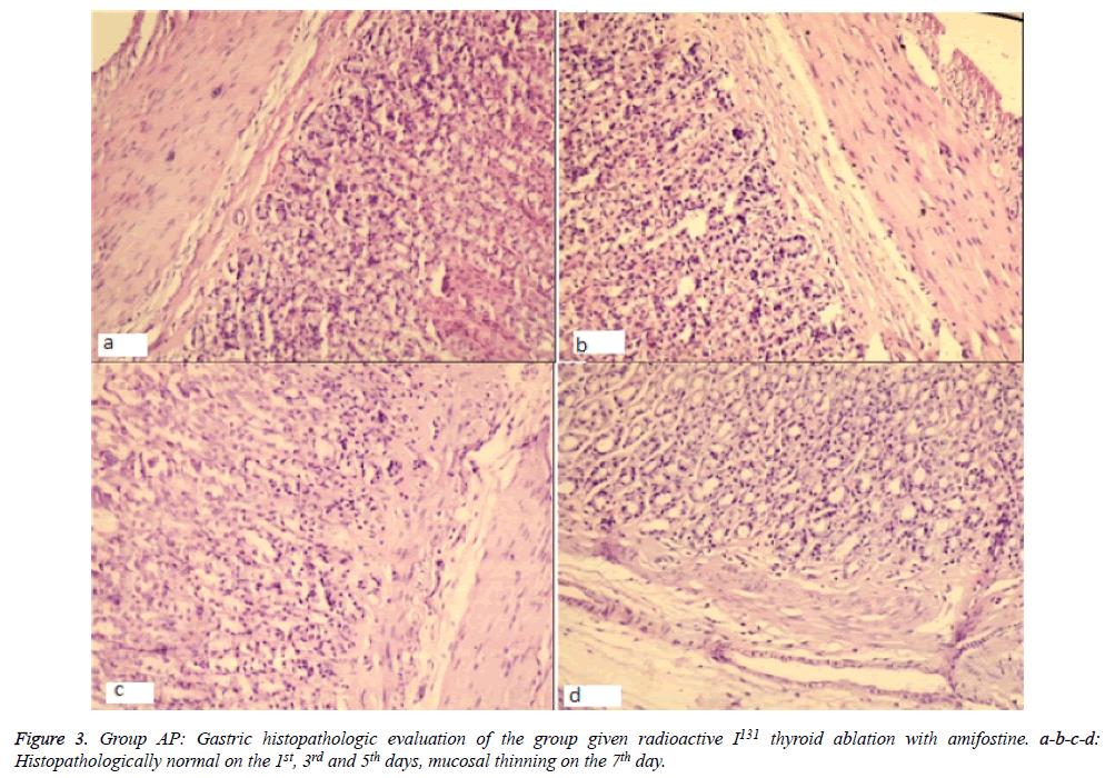 biomedres-mucosal-thinning