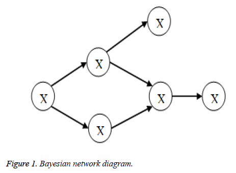 biomedres-network-diagram
