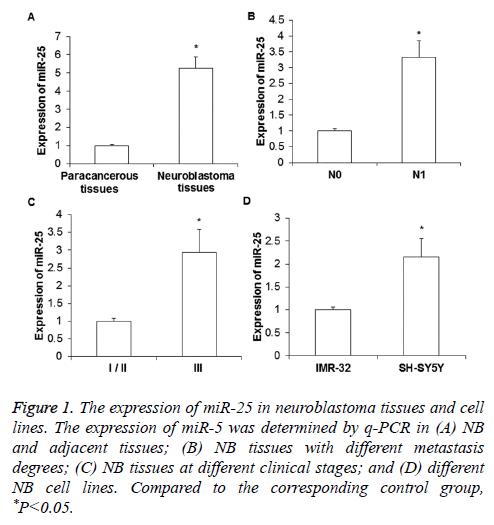 biomedres-neuroblastoma-tissues