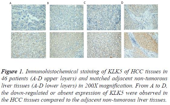 biomedres-non-tumorous-liver-tissues
