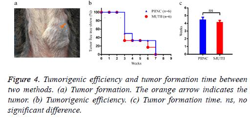 biomedres-orange-arrow