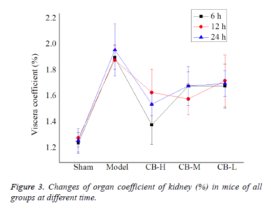 biomedres-organ-coefficient