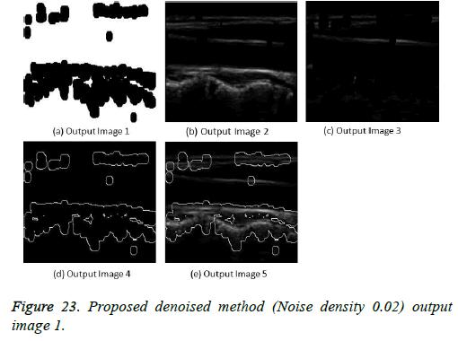 biomedres-output-image