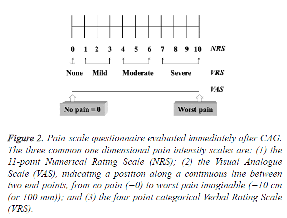 biomedres-pain-scale-questionnaire