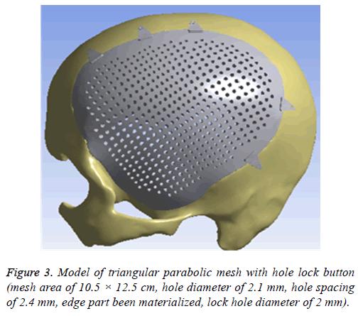 biomedres-parabolic-mesh