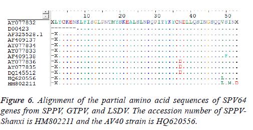 biomedres-partial-amino