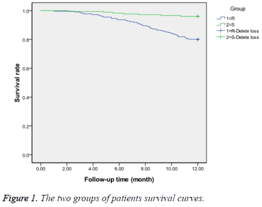 biomedres-patients-survival-curves