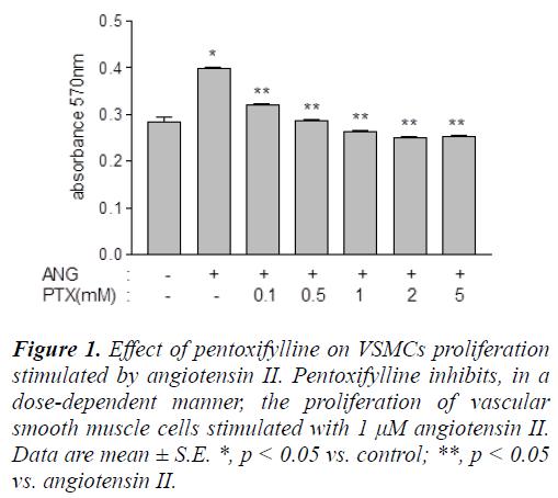 biomedres-pentoxifylline-VSMCs-proliferation