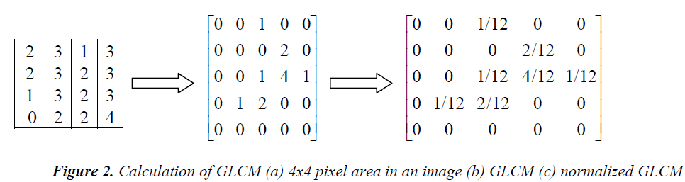biomedres-pixel-area