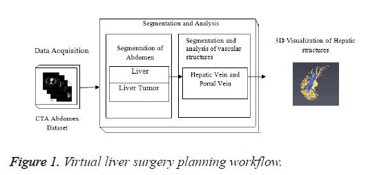 biomedres-planning-workflow