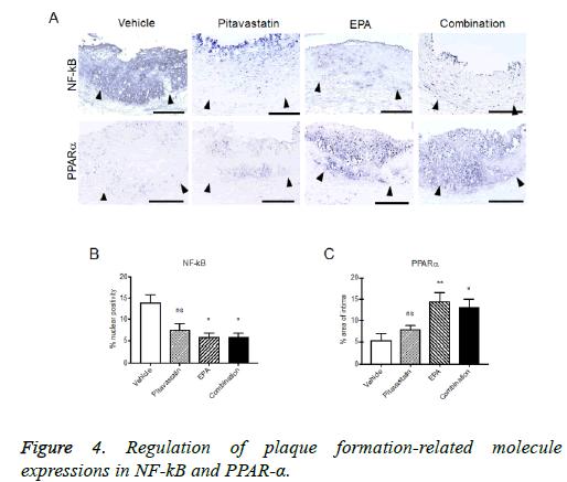 biomedres-plaque-expressions