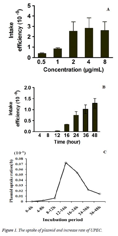 biomedres-plasmid-rate