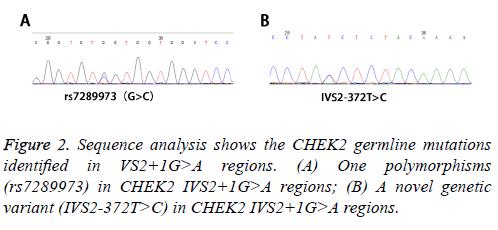 biomedres-polymorphisms-analysis