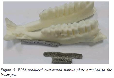 biomedres-porous-plate