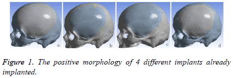 biomedres-positive-morphology