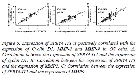 biomedres-positively-correlated