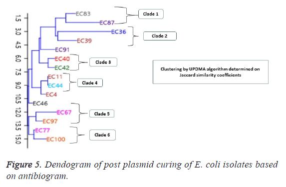 biomedres-post-plasmid-curing