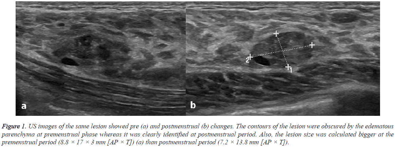 biomedres-postmenstrual-period