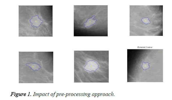 biomedres-pre-processing