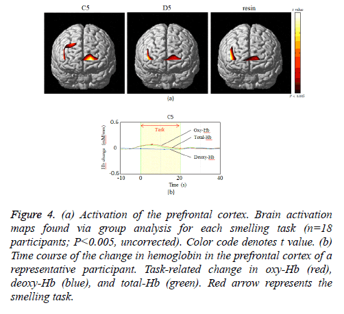 biomedres-prefrontal-cortex