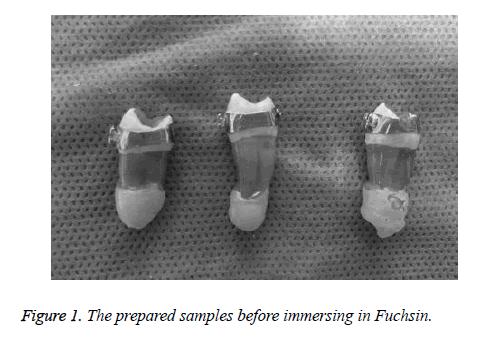 biomedres-prepared-samples