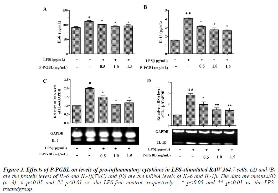 biomedres-pro-inflammatory-cytokines
