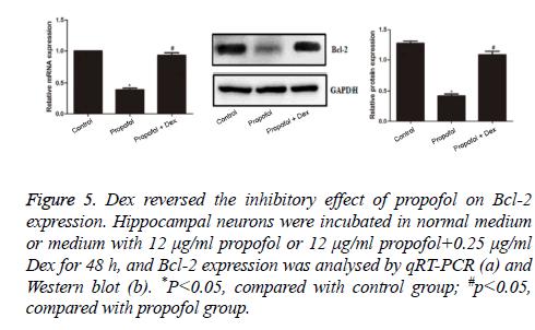 biomedres-propofol-group