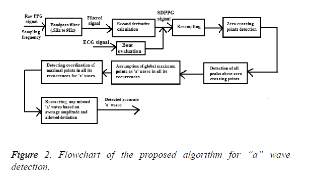 biomedres-proposed-algorithm