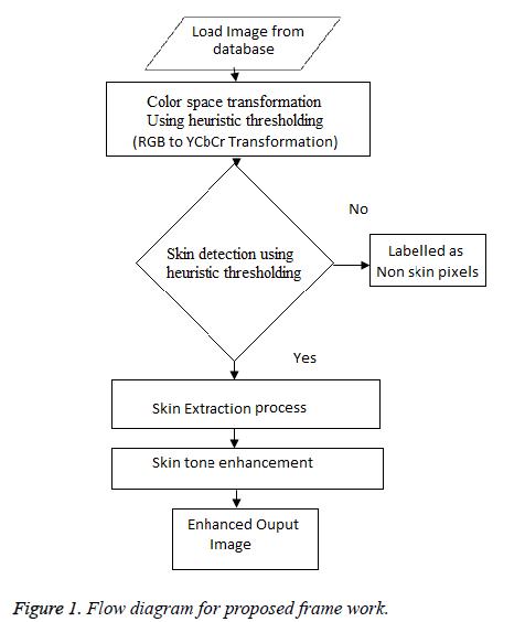 biomedres-proposed-frame-work