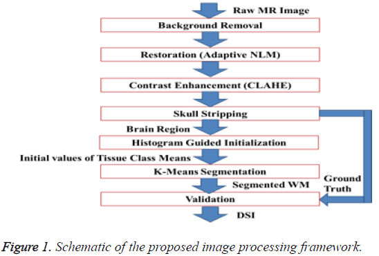 biomedres-proposed-image-processing