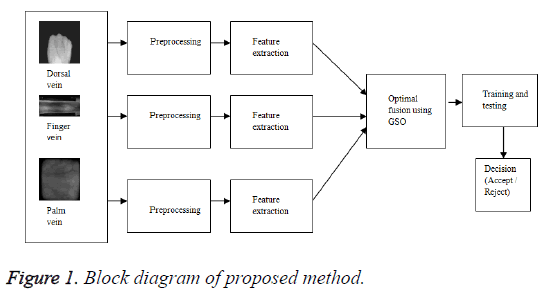 biomedres-proposed-method