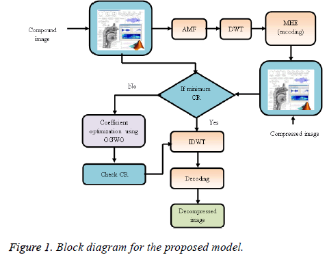 biomedres-proposed-model