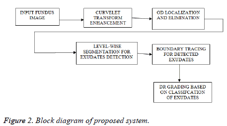 biomedres-proposed-system