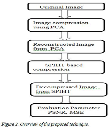 biomedres-proposed-technique