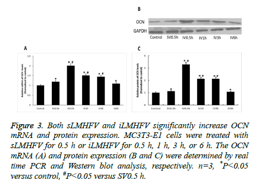 biomedres-protein-expression