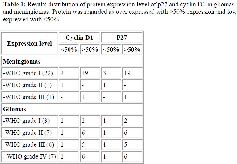 biomedres-protein-expression-cyclin-meningiomas-expressed