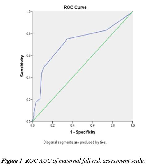 biomedres-risk-assessment-scale