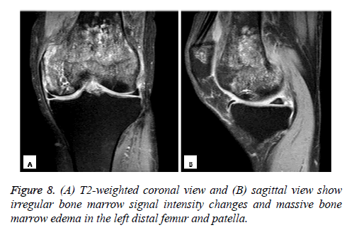 biomedres-sagittal-view