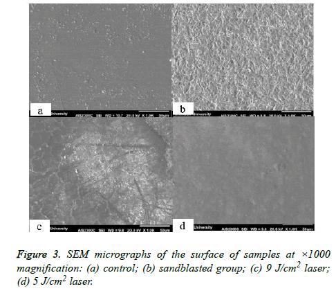 biomedres-sandblasted-group